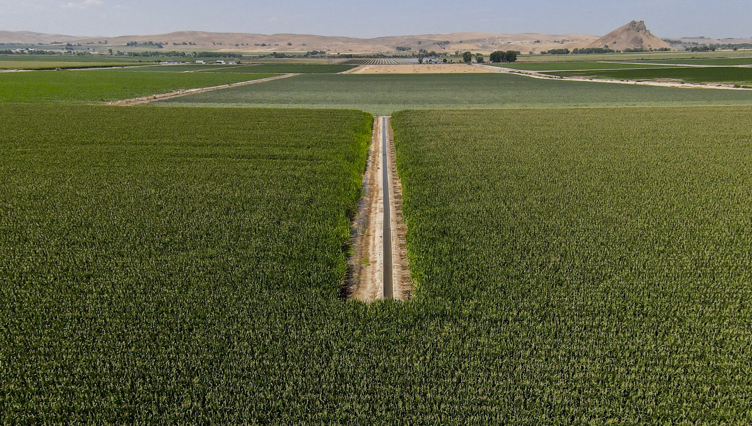 New plan from Global Warming Commission relies on farms, forests to absorb emissions